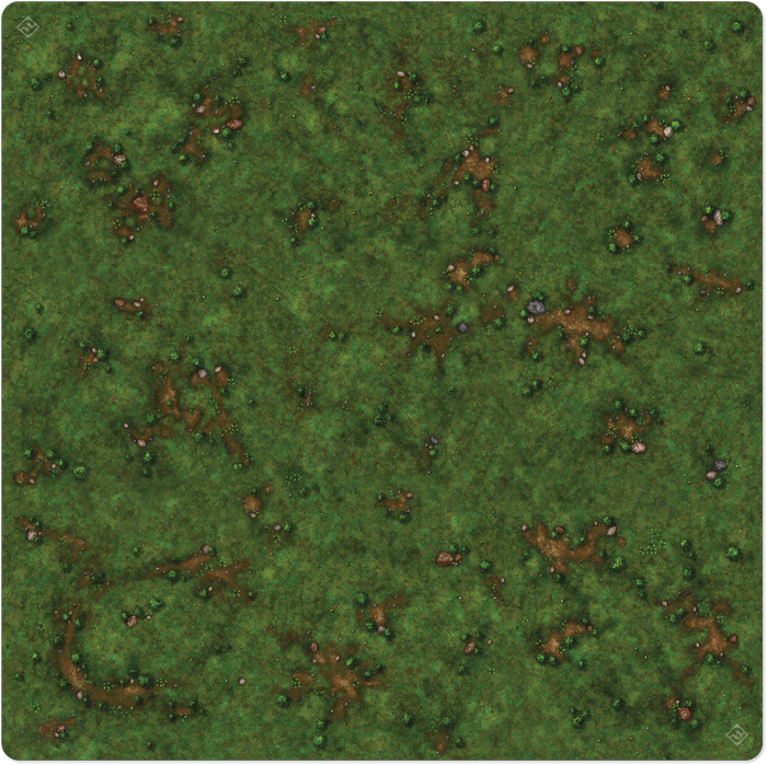 Runewars: The Miniatures Game - Grassy Field Playmat Box Front