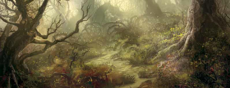 The Lord Of The Rings Lcg: Return To Mirkwood Nightmare Deck Box Front