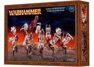 Warhammer Fantasy Battle: Dark Elves Witch Elves Box Front
