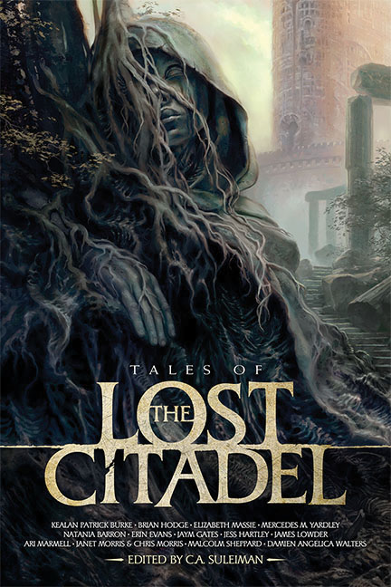 Lost Citadel Rpg: Tales Of The Lost Citadel (softcover) Game Box