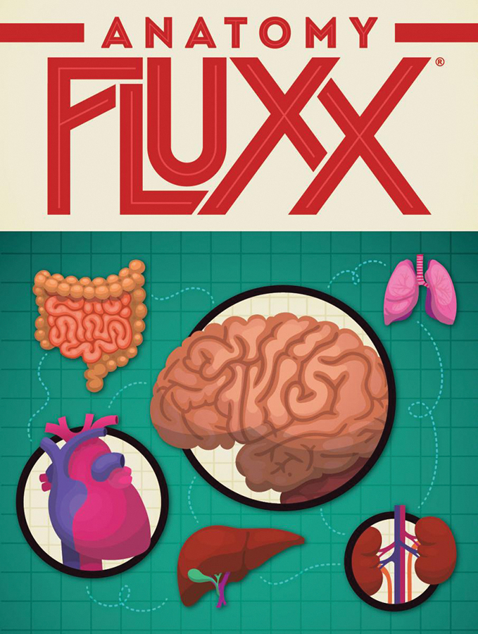 Anatomy Fluxx Box Front