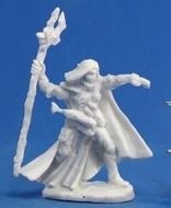 Dark Heaven: Bones Elquin High Elf Adventurer Box Front