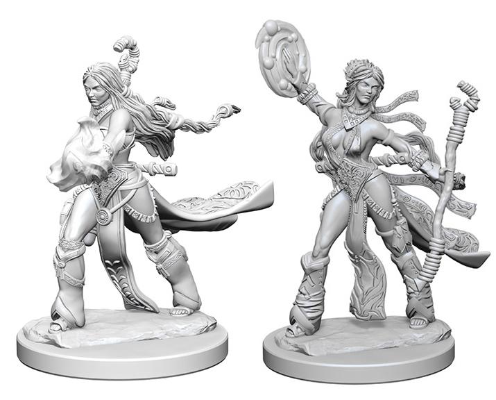 Pathfinder Deep Cuts Unpainted Miniatures: Human Female Sorcerer Box Front