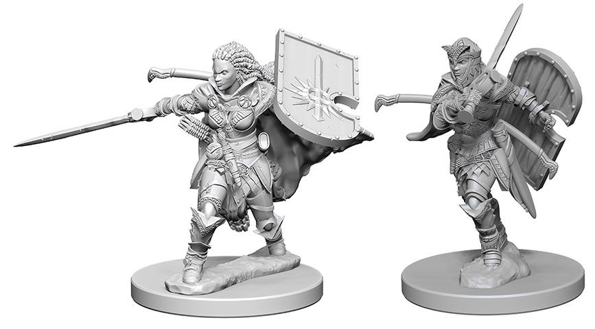 Pathfinder Deep Cuts Unpainted Miniatures: Human Female Paladin Box Front