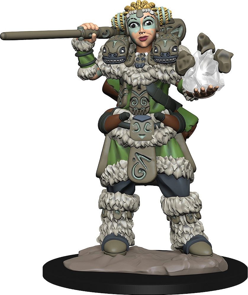 Wizkids Wardlings: Girl Druid & Stone Creature Box Front