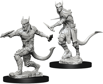Dungeons & Dragons Nolzur`s Marvelous Unpainted Miniatures: Tiefling Male Rogue Box Front