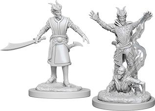 Dungeons & Dragons Nolzur`s Marvelous Unpainted Miniatures: Male Tiefling Warlock Box Front