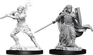 Dungeons & Dragons Nolzur`s Marvelous Unpainted Miniatures: W10 Female Human Paladin Game Box
